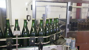 Sparkling wine pouring in bottles stock video footage