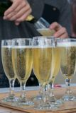 Sparkling wine in tall glasses stock photo