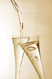 Sparkling Wine Stock Photography
