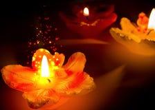 Sparklingblomman formar stearinljus Royaltyfri Fotografi