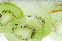 Sparkly kiwi Royalty Free Stock Photography