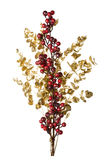 Sparkly Red Berries on Golden Leaves Isolated Background Royalty Free Stock Image