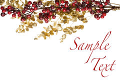 Sparkly Red Berries on Golden Leaves Isolated Border Royalty Free Stock Photos