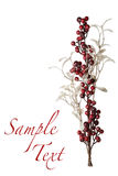 Sparkly Red Berries and Silver Glitter Pearl Leaves Background Royalty Free Stock Photos