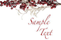 Sparkly Red Berries and Silver Glitter Pearl Leaves Border Stock Photography