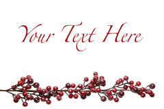 Sparkly Red and Silver Berries on Branch Background Stock Images