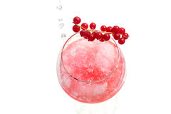 Sparkly water being poured into Gin hard liquor Royalty Free Stock Image