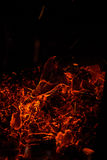 Sparks of bonfire night Stock Photography