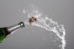 Sparks of champagne Stock Images