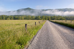 Sparks Lane, Cades Cove Stock Photography