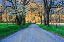 Sparks Lane, Cades Cove, Great Smoky Mountains. Spring time along Sparks Lane in Cades Cove of the Great Smoky Mountains National Park stock images
