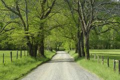 Sparks Lane in Cades Cove of Smoky Mountains, TN,. A scenic view of Sparks lane in Cades Cove of Great Smoky Mountains National Park, Tennessee, USA, in early Royalty Free Stock Image