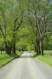 Sparks Lane in Cades Cove of Smoky Mountains, TN, USA. Stock Photos