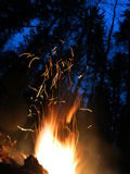 Sparks night fire Royalty Free Stock Photography