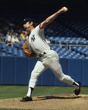 Sparky Lyle Stock Images