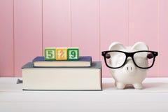 Sparplankonzept mit 529 Colleges Lizenzfreie Stockfotografie