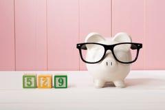 Sparplanthema mit 529 Colleges mit weißem Sparschwein mit Brillen Stockfotos