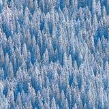Sparren door sneeuw naadloos patroon dat worden behandeld stock foto's