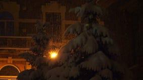 Sparren in sneeuw op een achtergrond van het huis tijdens een sneeuwval worden behandeld die stock video