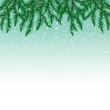Sparrentakken en sneeuwvlokken op kleurrijke achtergrond Royalty-vrije Stock Afbeelding