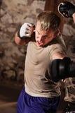 Sparring martial mélangé d'artistes Photographie stock