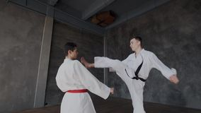 Sparring or single duels in taekwondo school. Pupils stand in a fighting stance and carry out huge kicks. Forceful