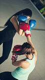 Sparring Royalty Free Stock Photo