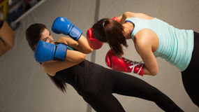 Sparring Royalty Free Stock Photography