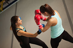 Sparring Royalty Free Stock Images