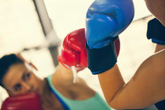Sparring Stock Photos