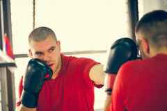 Sparring Royalty Free Stock Image