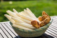 Sparris, vit sparris och potatisar i korgen Arkivfoton