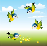 Sparrow. Vector imade. Flock of birds flew to lunch Royalty Free Stock Photo