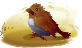 Sparrow. This illustration depicts sparrow in a field Stock Photography