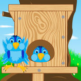 Bird sparrow and bird house. Sparrow and bird house on tree Stock Photo