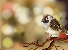 A sparrow on blurry background. Illustration stock illustration