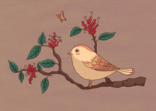 Sparrow. Drawing tiny sparrow in tree branches Royalty Free Stock Photography