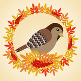 Sparrow in a frame of leaves and bunches of rowan. Vector illustration Vector Illustration