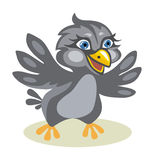 Sparrow. Fun cartoon sparrow in vector design Royalty Free Stock Images
