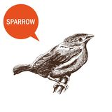 Sparrow Royalty Free Stock Photos