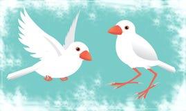 sparrow java ilustracji