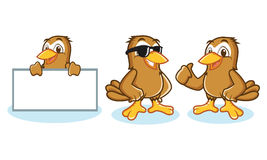 Sparrow Mascot Vector happy Royalty Free Stock Photos