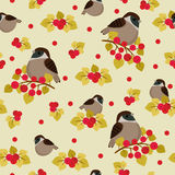Sparrow seamless pattern Stock Images
