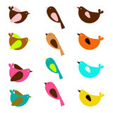 Sparrow set. A beautiful set of colorful sparrows in Stock Photos