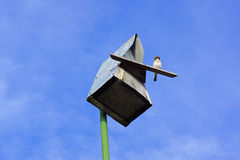 Sparrow sits at the entrance to the birdhouse. Against the sky Royalty Free Stock Photos