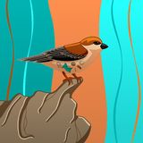 Sparrow with trash inside on stone royalty free illustration