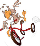 Sparrow on a tricycle. Cartoon Stock Images