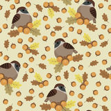 Sparrows and acorns seamless pattern Royalty Free Stock Photo