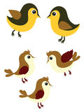 Sparrows and Tomtits Royalty Free Stock Images