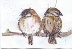 Sparrows. Wathercolor ink bird sparrow Stock Illustration